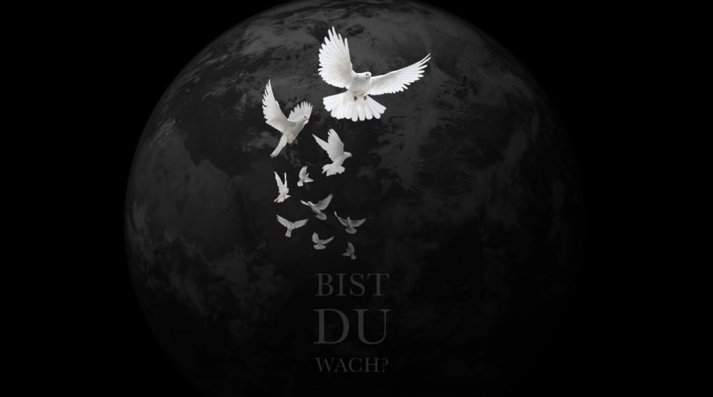 Azzi Memo feat. V.A. - Bist du wach?
